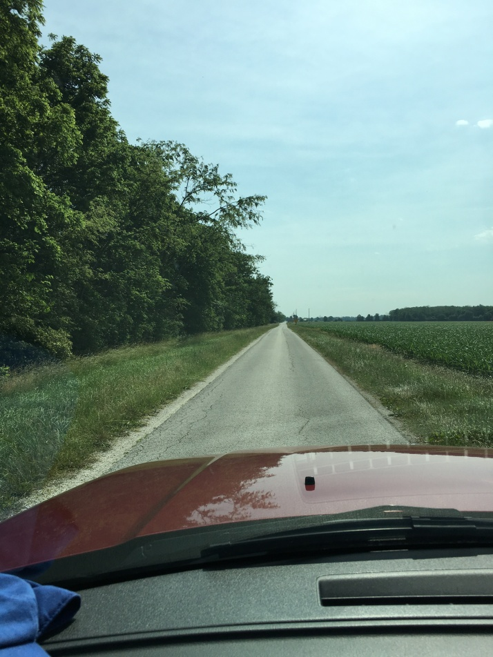 Narrow Roads IMG_7087