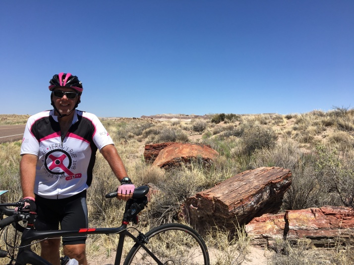 Ron in petrified forest