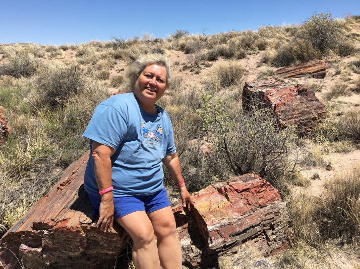 Terry sitting in petrified forest